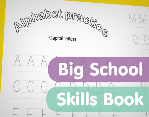 Big School Skills Book